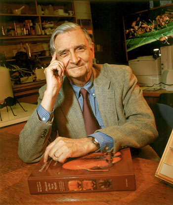 Photo of Edward O. Wilson, Pulitzer Prize-winning biologist.